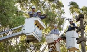 Empleados de Edelap trabajan para reestablecer el servicio.