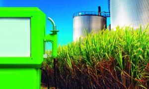 Ministerio de Agroindustria de la Provincia de Buenos Airesdiseñó un proyecto destinado a producir y comercializar biodiésel. Foto:Ilustrativa