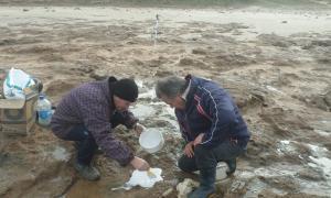 Recuperan gran variedad de fósiles en una sola exploración en Miramar (M. Gral. Alvarado)