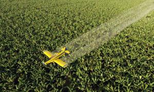 La intención es reducir el uso de agrotóxicos que impactan en la salud y el medioambiente.