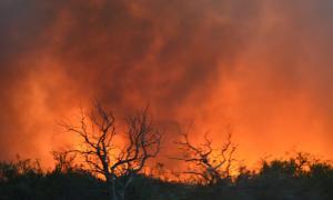 Los riesgos de incendio crecen entre noviembre y marzo