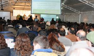 Más de 400 productores estuvieron presentes en las Jornadas a Campo del IPCVA
