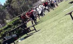 Video: Gentileza TN