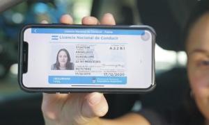Cómo funciona la Licencia de conducir digital que será válida para todo el país