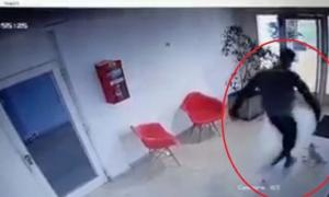 La Plata: El exárbitro que golpeó brutalmente a la perrita Mia será indagado el miércoles