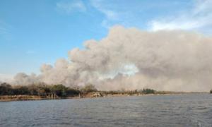Uno de los tantos incendios registrados en el Delta.