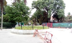 El histórico ombú de la calle Gaspar Campos no existe más.