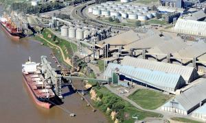 Sigue el paro de aceiteros y recibidores de granos: Afecta a los puertos agroexportadores