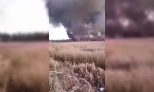 Esteban Echeverría: Se detectaron focos de incendio en la Reserva Natural Laguna de Rocha