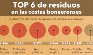 Más del 80% de los residuos en las playas bonaerenses son plásticos, según Censo de basura