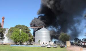 Tras el incendio, buscan sancionar un registro municipal de operadores de sustancias especiales. Foto: Master News