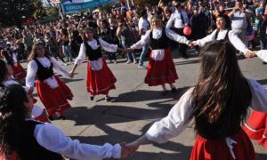 40° Fiesta provincial del Inmigrante en Berisso
