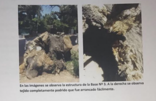 Informe técnico de laFacultad de Arquitectura, Diseño y Urbanismo de la Universidad de Buenos Aires