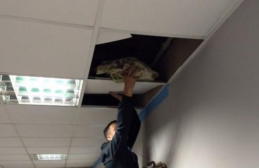 La droga fue hallada en el techo del edificio.
