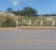 La zona donde fue encontrado el cuerpo mutilado del menor.