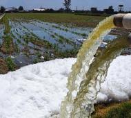 Aprueban ordenanza que permite analizar si el agua tiene agrotóxicos. Foto: Prensa