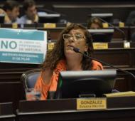 """La diputada por Unidad Ciudadana cuestionó la media sanción a la Ley """"anti-motochorro"""". Foto: Prensa"""