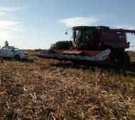 Dos obreros rurales murieron tras ser aplastados por una cosechadora. Foto: Prensa
