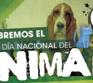 Malvinas Argentinas festeja el Día Nacional del Animal este 4 de mayo