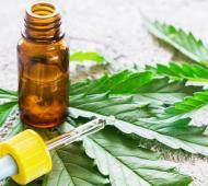 Castelli aprobó ordenanza por unanimidad para regular el cultivo de cannabis medicinal