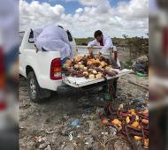 La Provincia decomisó 2140 kilos de alimentos en rutas  Pinamar y Tordillo