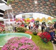 Escobar comienza a celebrar la 56° Fiesta Nacional de la Flor.