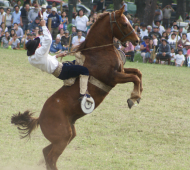 Bragado recibe la48º Fiesta Nacional del Caballo.