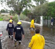Piedritas bajo el agua. Foto: Diario Actualidad.