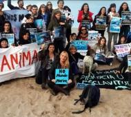 Los activistas protestarán el domingo 26 en Mundo Marino.